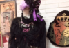 ブランド辞典:秘密のアリスになれるドレス*ALICE and the PIRATES