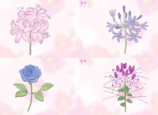 ロマンティック♡かわいい花言葉を持つお花16選♡