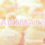 癒しの笑顔にキュン!コロコロ可愛すぎる動物たち大集合~!