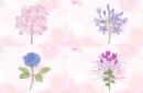 ロマンティック💗かわいい花言葉を持つお花16選💐💗